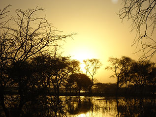 Paysage du Tchad
