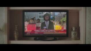 MusicVid: CAPITAL CITIES: KANGAROO COURT