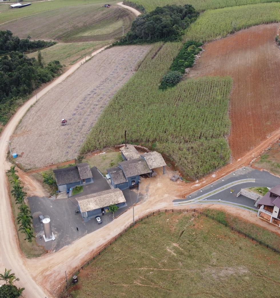 Monitoramento de Plantação e Colheita - Cachaçaria do Conde - Orleans - SC