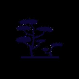 noun_savanna_639368-3.png