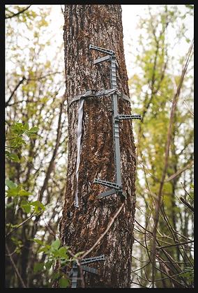 D'Acquisto Series Climbing Sticks Compact Length Single
