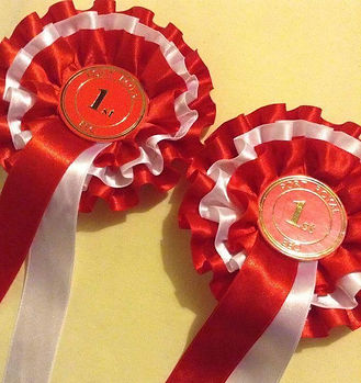 first 1st place rosettes winning