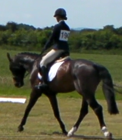 Bordeaux dressage