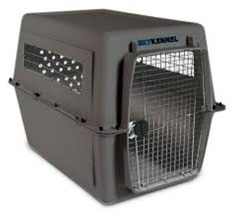 Black Dog Kennel.jpg