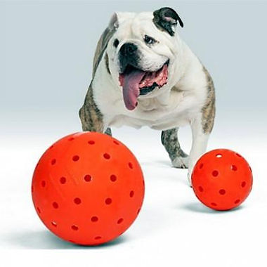BulldogToys.jpg