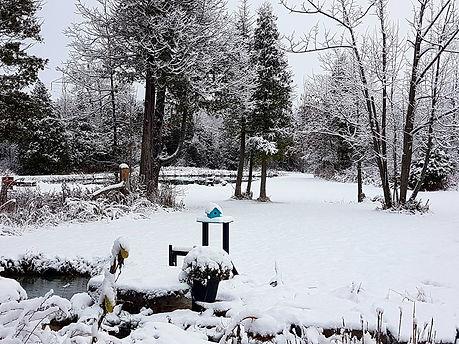 yard-snow.jpg