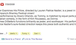 Los Angeles Times give Lauren's The Dreamer Examines His Pillow 5 Stars!