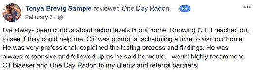radon mitigatin system review lakeville