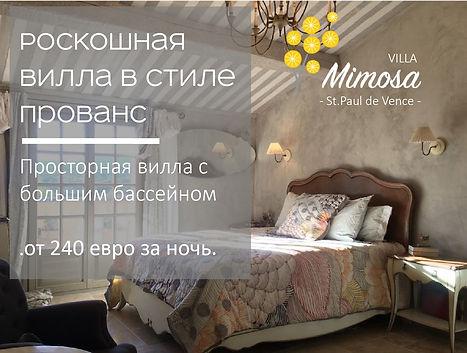 Mimosa1-01.jpg