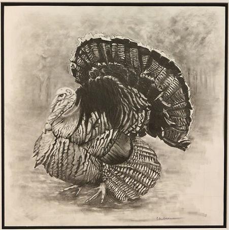AN_American_Wild_turkey_22x24_graphite_x