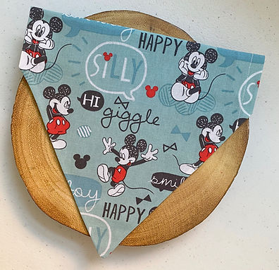 Teal & Red Mickey Mouse Pet Bandana