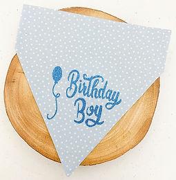 Birthday Boy Pet Bandana