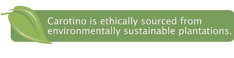 ethical_logo.jpg