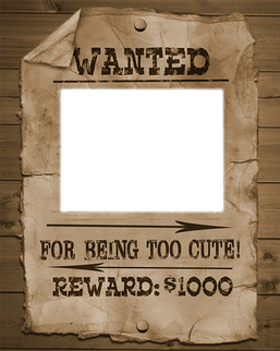 template (40).png