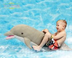newborn on dolphin