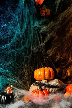 coiled-spider-silk-background-pumpkin-la
