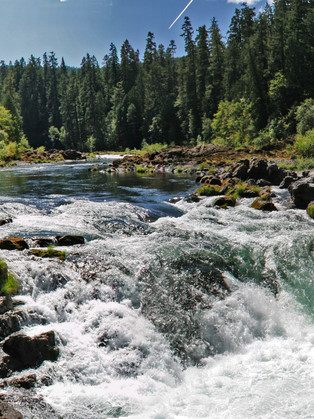 PRESIDENT SIGNS SWEEPING CONSERVATION BILL