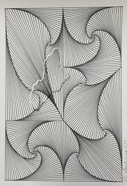 fractais flor