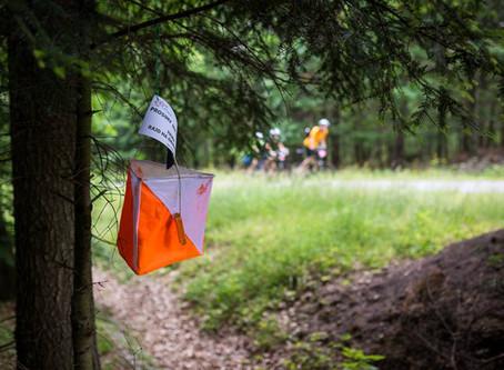 Lasy Przysuskie | Przysucha, 27-06-2015