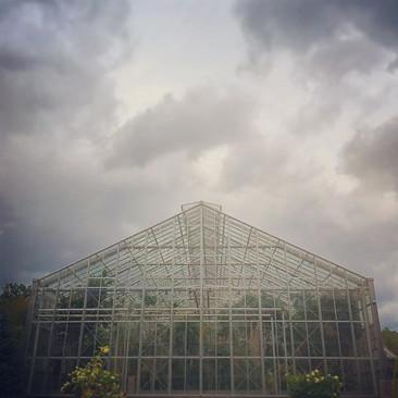 Gorgeous glass house.jpg