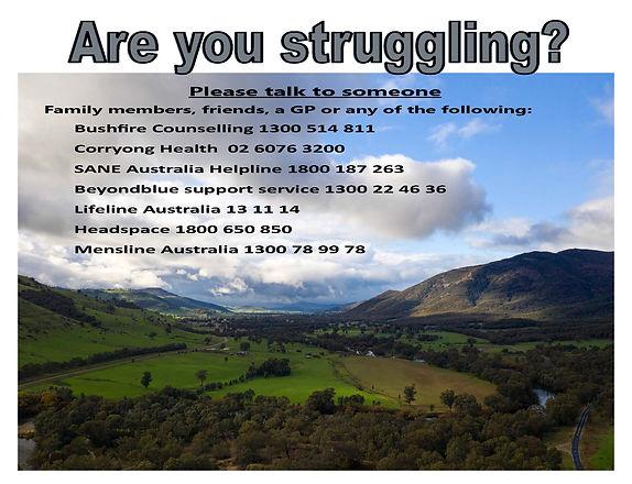 Are you struggling flyer.jpg