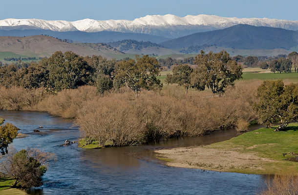Murray River and Snowy Mts.jpg