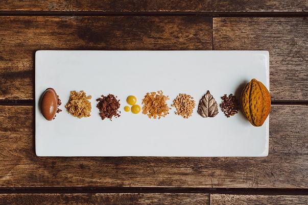 Cacaotal deconstruido 2.jpg
