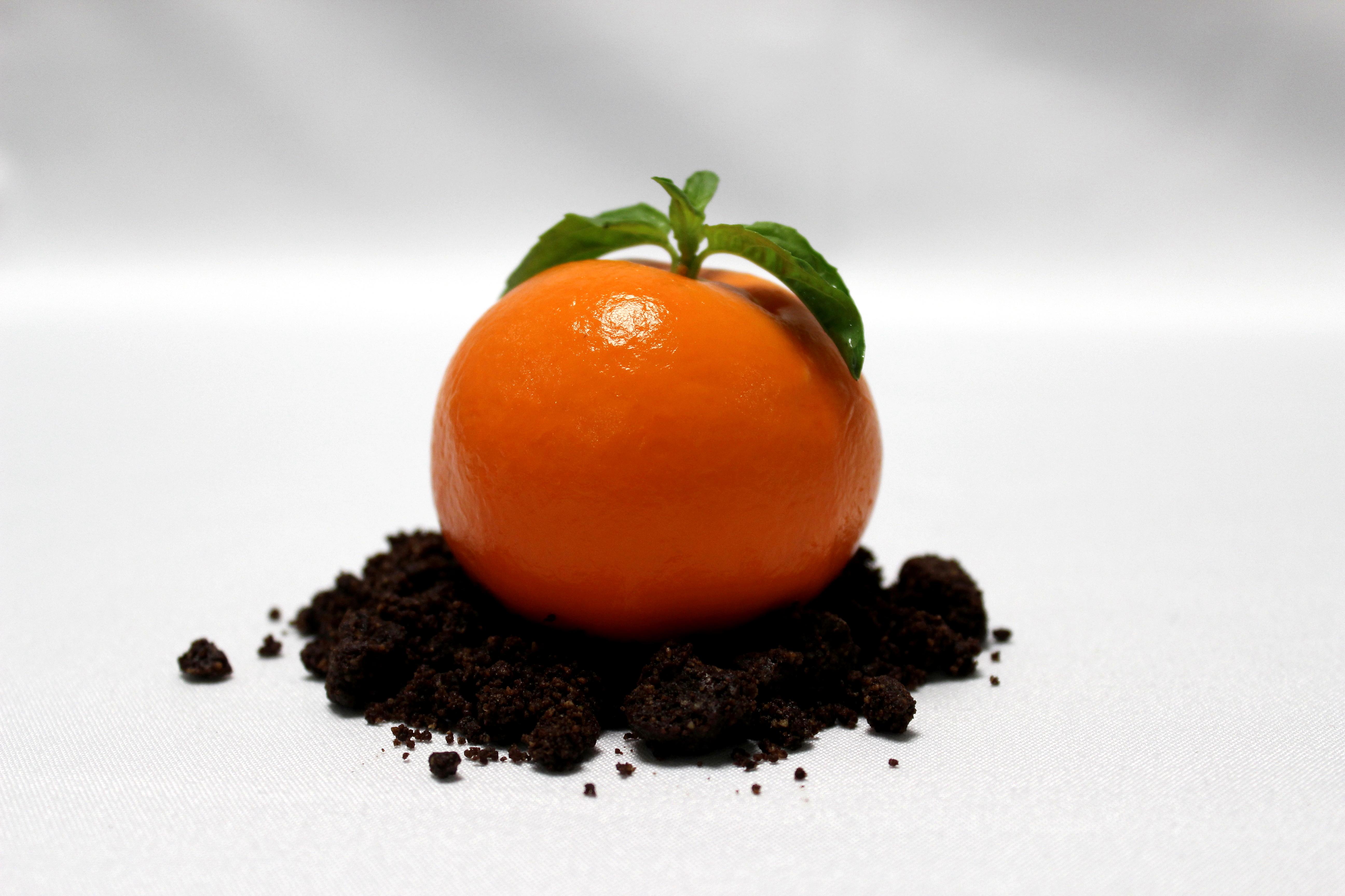 Mandarina Cheesecake (2012)