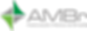 LOGO-AMBr_fundo-transparente-1-1024x365.