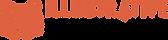 IV-logo-logotype.png