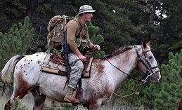 special-forces-horse-hr.jpg