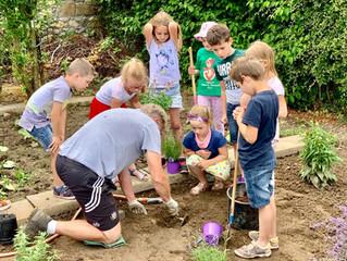 Les plantations au jardin de l'école francophone des Fourons