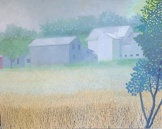 Misty Waterville Barns
