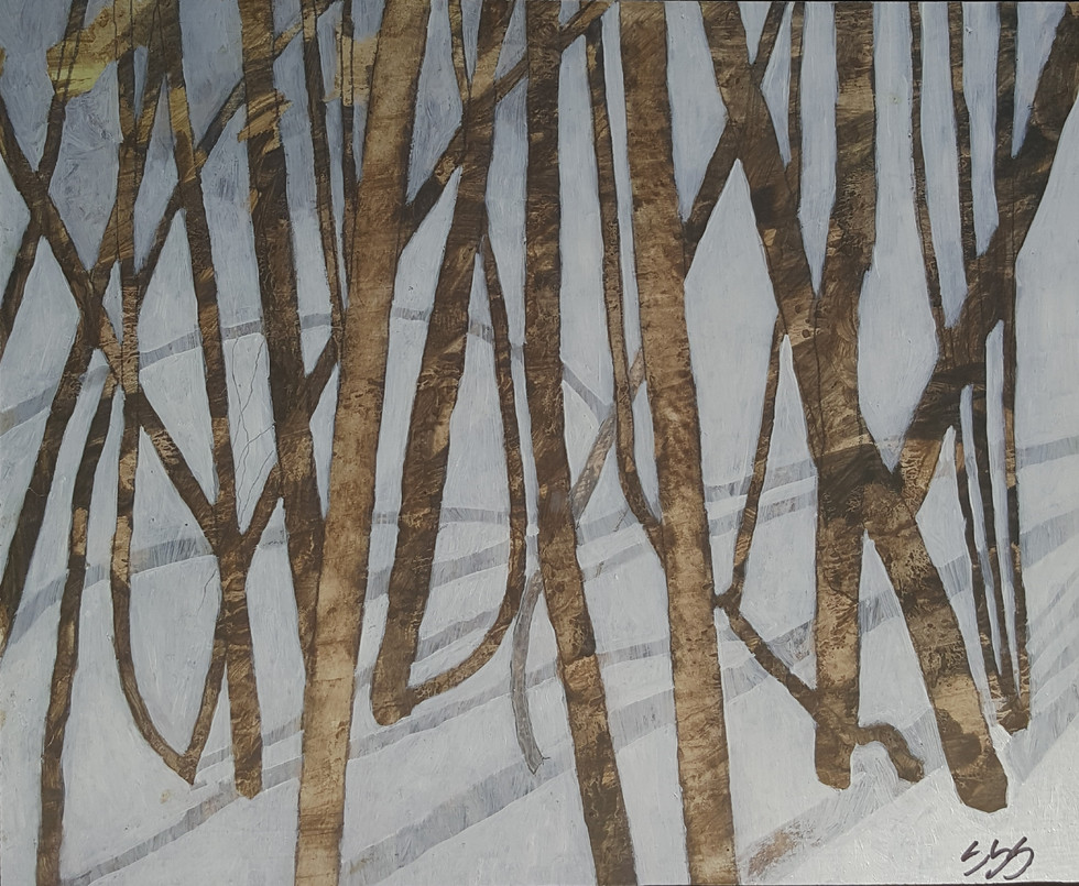 Trees and Shadows in Snow