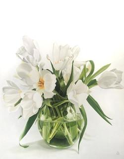 """Tulipani bianchi"""