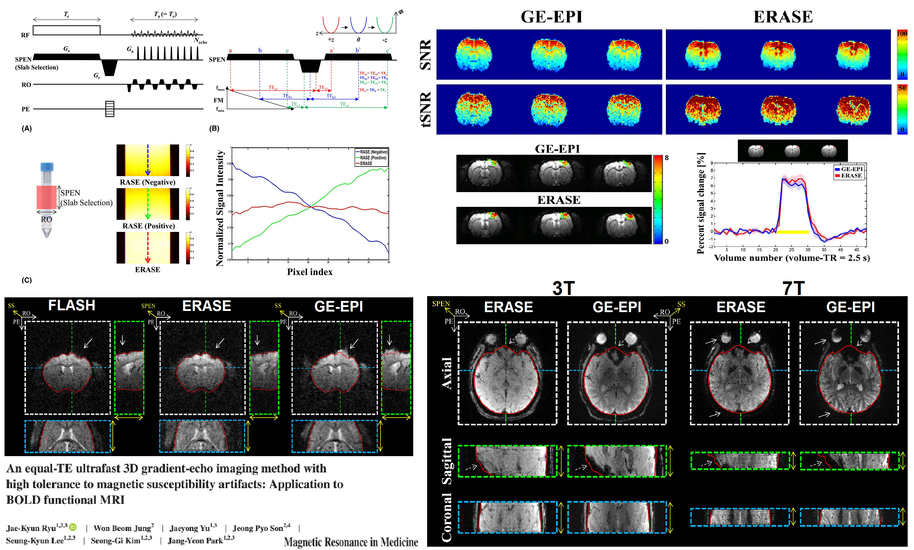 An equal-TE ultrafast 3D gradient-echo imaging method with high tolerance to magnetic susceptibility artifacts: Application to BOLD functional MRI