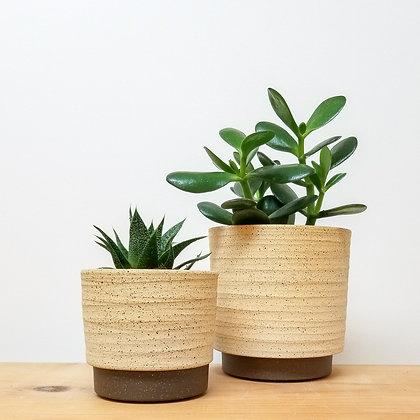 Sand Dunes Plant Pot: Small Raw / Medium Raw