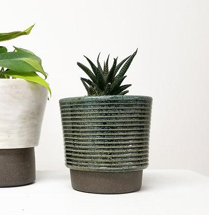 Blue Plant Pot: Small