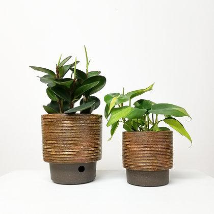 Plant Pot: Small/Medium