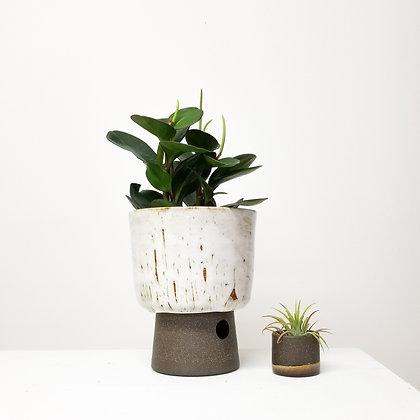 Desert White Plant Pot: Large