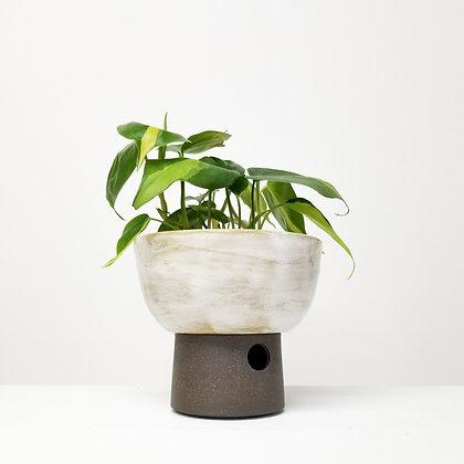 Desert White Plant Pot: Small