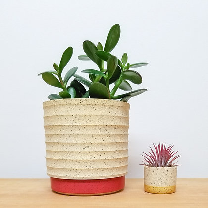 Sand Dunes Plant Pot: Medium Red