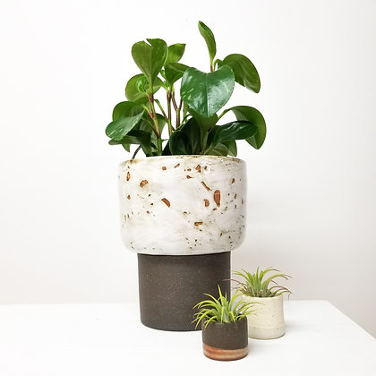 Desert White Plant Pot: Large