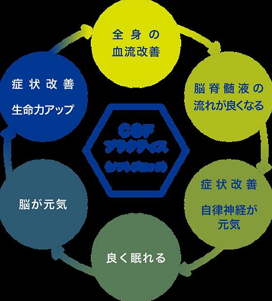 new-rcc_csf_1.png