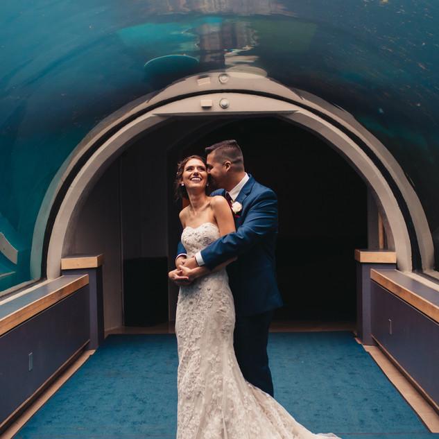 Pittsburgh Zoo Wedding Photography