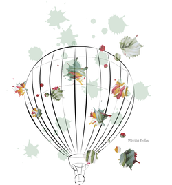 airballoon-MB