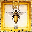 queen bee, mixed-media encaustic painting