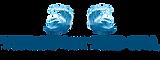 Logo TTSMFCI png.png