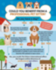 Ways You May Benefit from a Professioal Pet Sitter!