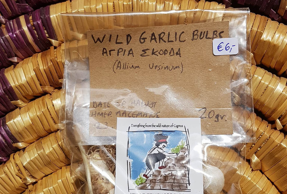 Wild Garlic bulbs (Allium ursinum) 20gr.